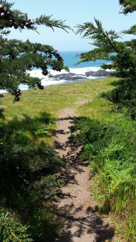 wp116 cypress path