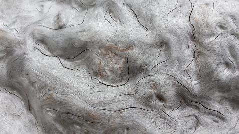 wp172 swirl wood