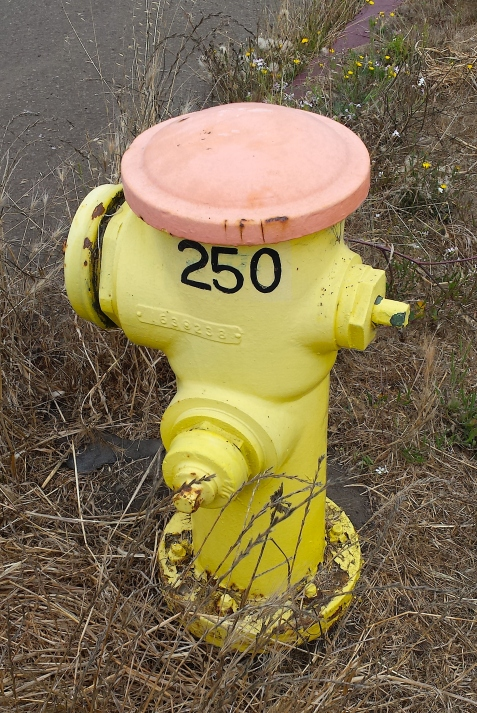 wp196 fire hydrant