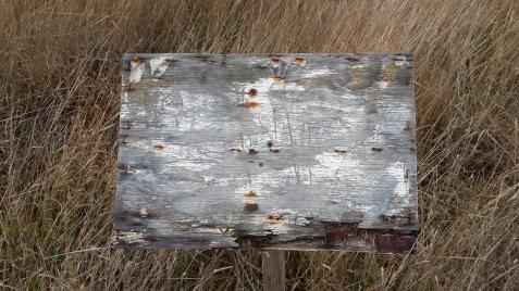 wp197 blank sign near lighthouse